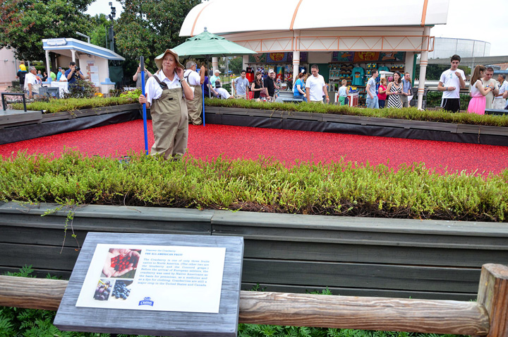 Disney World: Epcot Center. Food&Wine Festival