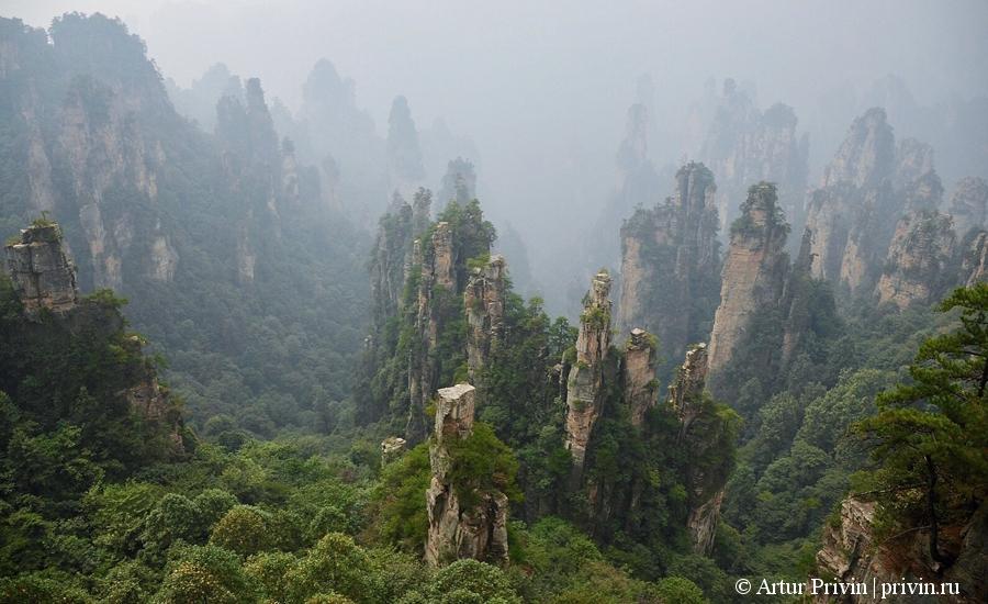 горы-Тяньцзи-парк-Чжанцзяцзе